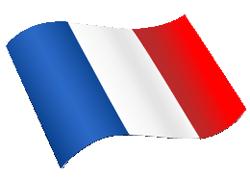 magyar-francia fordító